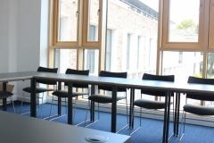 tabara internationala engleza si studii academice (15)