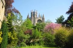 Tabara_limba_engleza_– _King's_Ely_College_langa_Cambridge_Anglia_3