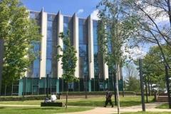 Tabara_limba_engleza_Canterbury_Kent_University_1