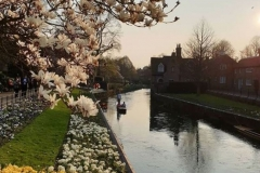 Tabara_limba_engleza_Canterbury_Kent_University_9
