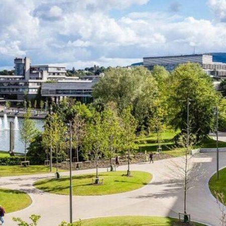 Tabara internationala limba engleza – University College Dublin